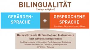 Grafikschema Bilingualität d
